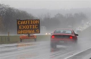 Caution Exotic Animals